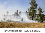 A Wildfire In Forest Due To...