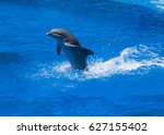 dolphins frolic in the blue... | Shutterstock . vector #627155402