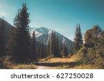 Mountain Forest Landscape....