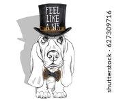 puppy basset hound in a...   Shutterstock .eps vector #627309716