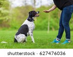 woman gives a command to her... | Shutterstock . vector #627476036
