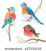 set of watercolor birds on white | Shutterstock . vector #627533135