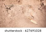 Archaeological Tools Near The...