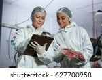 Female Butchers Maintaining...