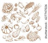 vegetables vector icons. sketch ... | Shutterstock .eps vector #627747026