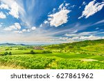 Vine Plantations In Picturesqu...