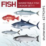 marketable fish image design...   Shutterstock .eps vector #62792491