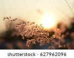 when the sun down | Shutterstock . vector #627962096