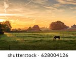 horse grazing on a foggy... | Shutterstock . vector #628004126