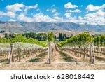 vineyard in gibbston valley ... | Shutterstock . vector #628018442