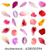 Stock photo assorted flower petals in seasonal 628050596