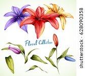 lilly illustration. set of... | Shutterstock .eps vector #628090358
