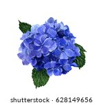 Hydrangea Flower Hand Painted...