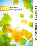 autumn background  eps10 | Shutterstock .eps vector #62834755