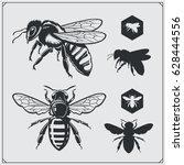 Set Of Honey Emblems And Desig...