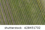 vineyard from above  patterns... | Shutterstock . vector #628451732
