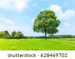 green grass and tree under the... | Shutterstock . vector #628469702
