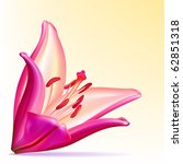 photo realistic vector... | Shutterstock .eps vector #62851318