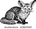 otocyon megalotis | Shutterstock .eps vector #62865469