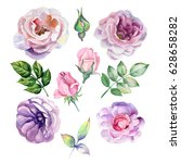 watercolor set of lilac roses | Shutterstock . vector #628658282