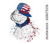 a beautiful pit bull in a cap.... | Shutterstock .eps vector #628673156