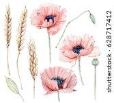 watercolor vintage floral set.... | Shutterstock . vector #628717412