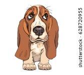 Stock vector portrait of a puppy basset hound vector illustration 628720955