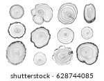 tree rings vector line graphic... | Shutterstock .eps vector #628744085