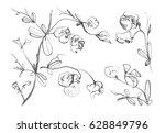 black and white monochrome... | Shutterstock . vector #628849796