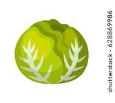 cabbage fresh vegetable icon | Shutterstock .eps vector #628869986