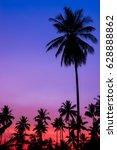 silhouette of coconut tree | Shutterstock . vector #628888862