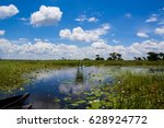 blooming water lilies and... | Shutterstock . vector #628924772