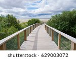 boardwalk through the coastal... | Shutterstock . vector #629003072