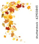 autumn leaves  swirl with space ... | Shutterstock .eps vector #62903845