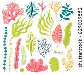 sea plants and aquatic marine... | Shutterstock .eps vector #629039552