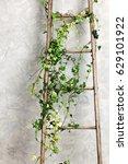 old wooden ladder   Shutterstock . vector #629101922