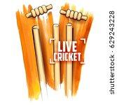 illustration of cricket stumps... | Shutterstock .eps vector #629243228