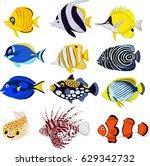 cartoon tropical fish... | Shutterstock .eps vector #629342732