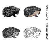 hedgehog small grisun.u... | Shutterstock .eps vector #629444528