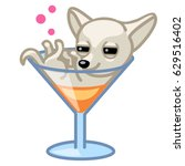 drunk chihuahua dog in a... | Shutterstock .eps vector #629516402