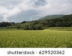 windfarm in nagato
