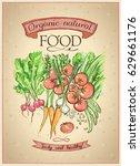 organic natural food poster... | Shutterstock .eps vector #629661176