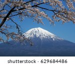 fuji mountain with cherry... | Shutterstock . vector #629684486