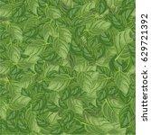 nature seamless pattern. basil... | Shutterstock .eps vector #629721392