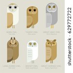 Stock vector vector owls set varieties of owls characters collection geometric simple design pastel shades 629772722
