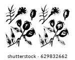 black and white monochrome... | Shutterstock . vector #629832662