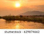 elephants in lower zambezi... | Shutterstock . vector #629874662
