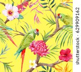 watercolor tropical tree... | Shutterstock . vector #629909162
