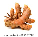 turmeric roots with turmeric... | Shutterstock . vector #629937605