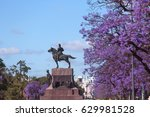 spring flowering jacaranda in... | Shutterstock . vector #629981528